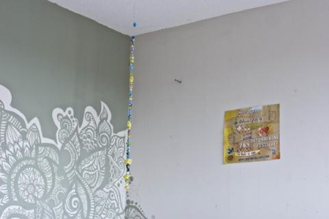 casa robino - current looks